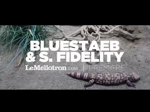 Bluestaeb & S. Fidelity - Fuckin' Up