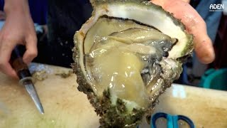 Japanese Street Food: Giant Oysters