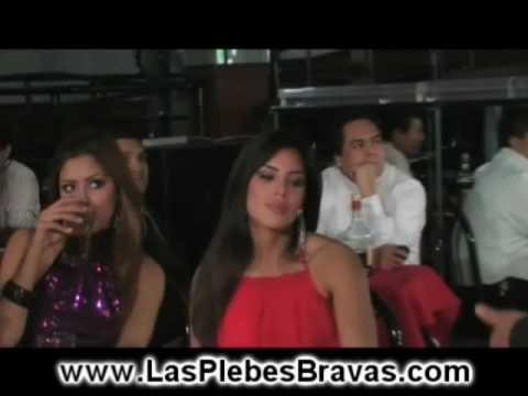 Corridos de Narcos - Las Plebes Bravas Video
