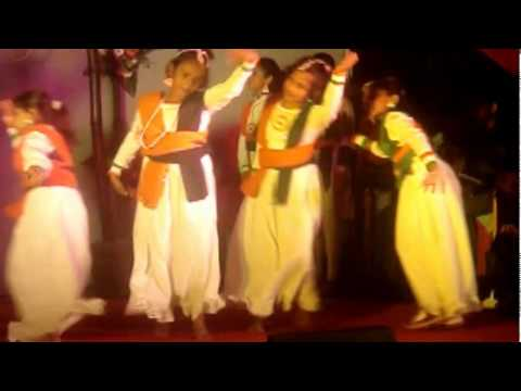 Desh Mera Rangila Patriotic song Group dance  Mamlu Preeta Puhan...