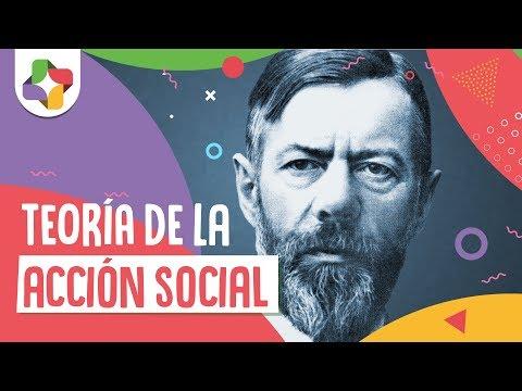 Max Weber: Teoría de la acción social – Filosofía – Educatina
