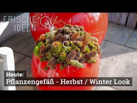 Pflanzgefäße im Herbst/Winter-Look, Teil 3