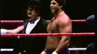 Don Muraco vs  Swede Hansen P1