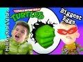 Biggest HULK + TMNT Surprise Eggs! Fun Toys with Ninja Turtles HobbyKidsVids