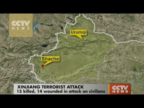 15 killed, 14 injured in Xinjiang terrorist attack