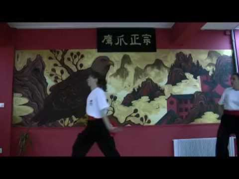 Lily Lau Shaolin Eagle Claw Kung Fu Image 1