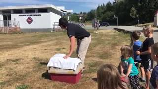 Release of a Red Tailed Hawk in Langley