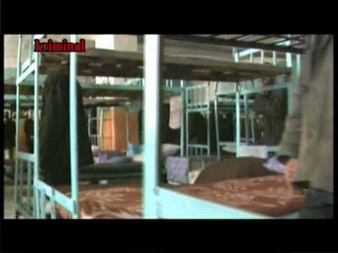 RTV kriminal vor zakonlar 1