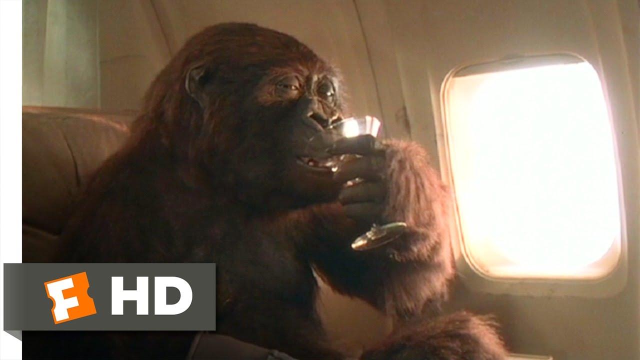 Green Gorilla Drink