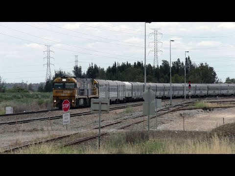 Huge Trains! Really Long Passenger Trains - Australian Trains