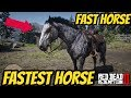 Red Dead Redemption 2 FASTEST HORSE IN THE GAME mp3