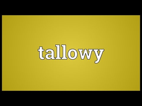Header of tallowy
