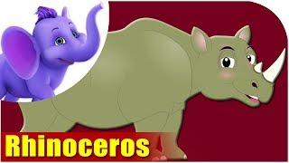 Rhinoceros - Animal Rhymes in Ultra HD (4K)