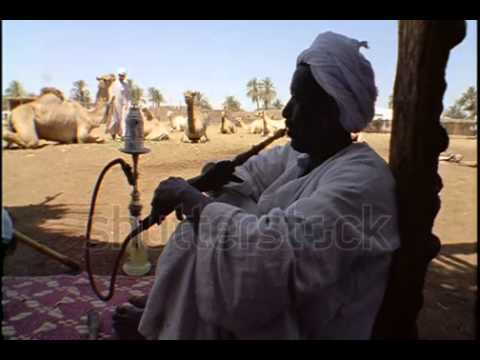stock footage egypt april scenes of daily life in a nubian village ms nubian man smoking hookah in