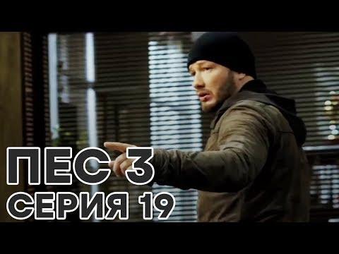 Сериал ПЕС - все серии - 3 сезон - 19 серия - смотреть онлайн