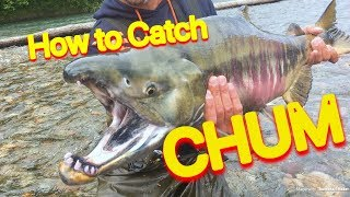 How To Catch Salmon - Kitimat Chum