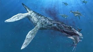 ~|First ||Prehistoric Shark|| captured on a real photage.. watch |~