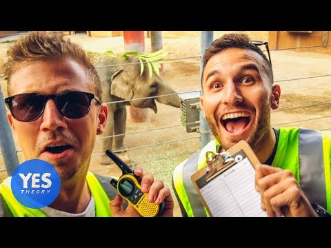 Sneaking in EVERYWHERE for FREE (Yellow Vest Experiment)
