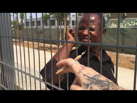DGK x High Times