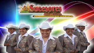 Los Sucesores Del Norte Mix 2013