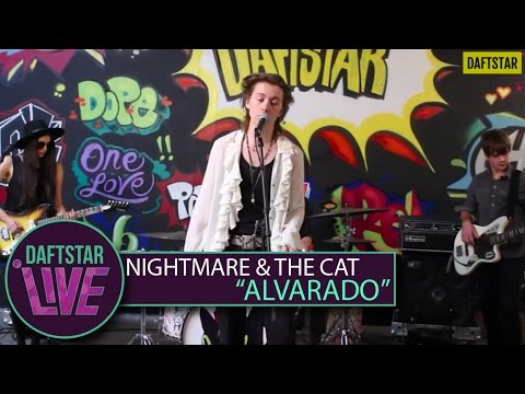Nightmare And The Cat - Alvarado