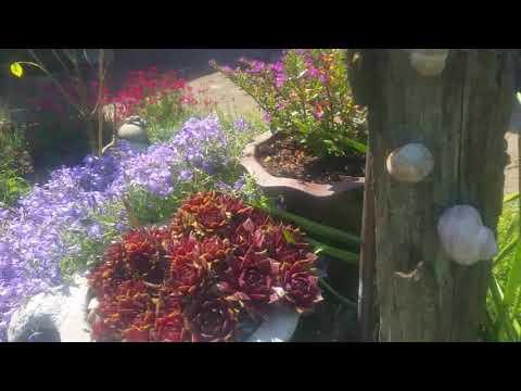 Deko Schnecken für den Garten