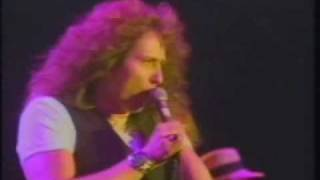 Watch Whitesnake Walking In The Shadow Of The Blues video