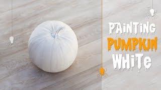Painting pumpkin white