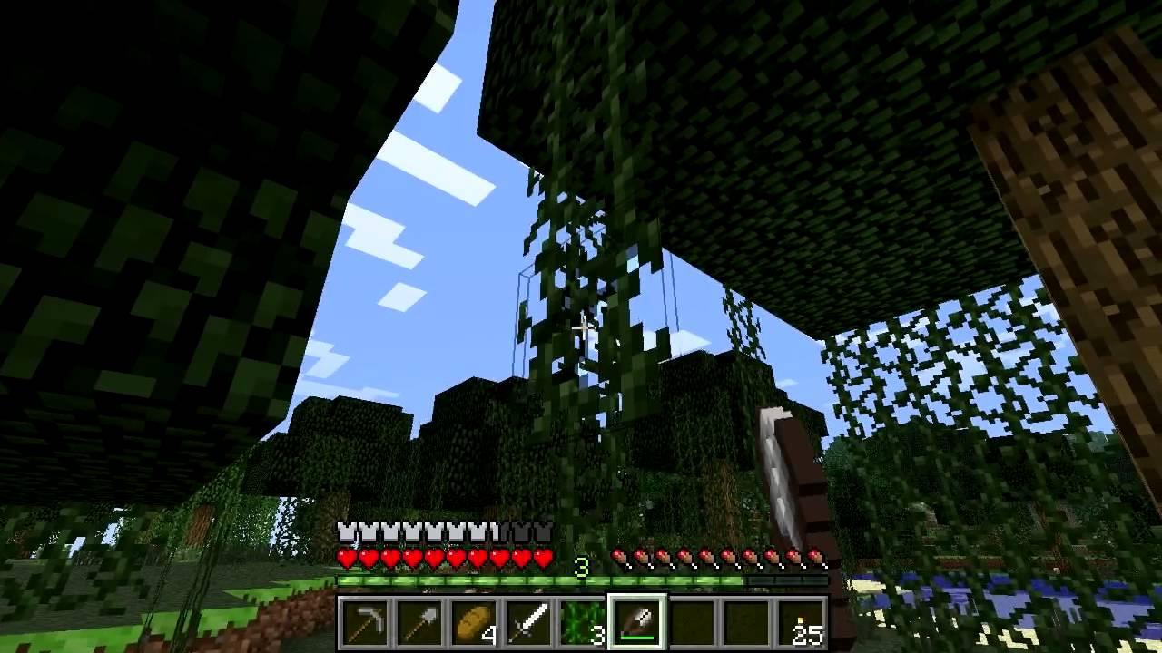 Vines – Minecraft Wiki