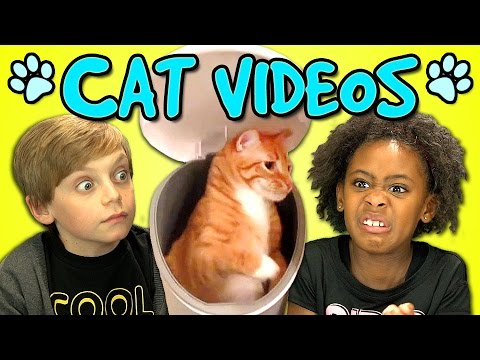 KIDS REACT TO CAT VIDEOS