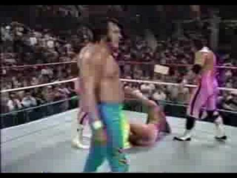 Hulk Hogan Saves Macho Man Randy Savage