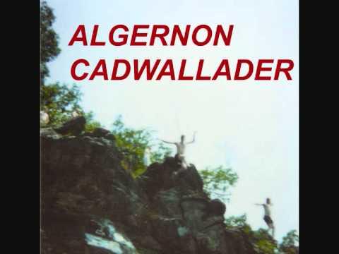 Algernon Cadwallader - Spit Fountain