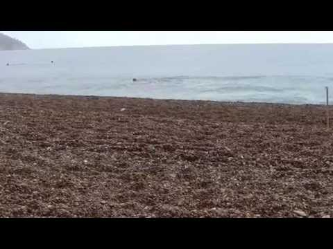 Gargano Puglia Spiaggia di Vignanotica.wmv