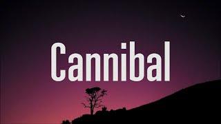 Download lagu Kesha - Cannibal (Lyrics)
