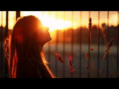 Chicane feat. Bryan Adams - Dont Give Up (Myon & Shane 54 Summer...