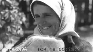 Yugoslavia (1940)