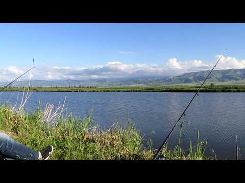 В поисках места для Рыбалки  CarpLake выпуск №1