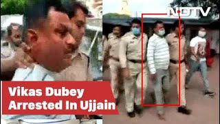 """I Am Vikas Dubey,"" Gangster Shouted At Temple Before Arrest"