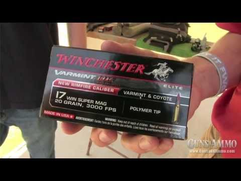 At the Range: Winchester .17 HMR vs .17 WSM