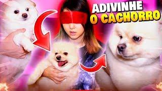 Adivinhe o CACHORRO! - TAG - CASAL DE NERD