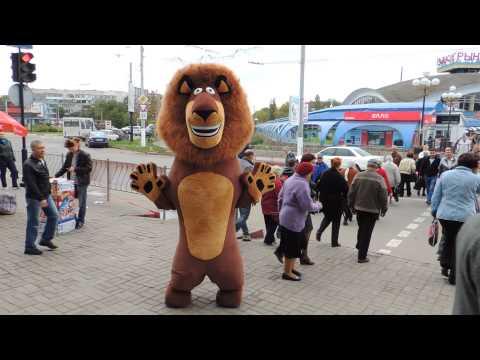 В Керчи возле автовокзала бегает лев, сбежавший из цирка! Керчане взбудоражены