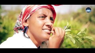 Negasi Tesfamariam - Segom   - New Eritrean Music Video 2017