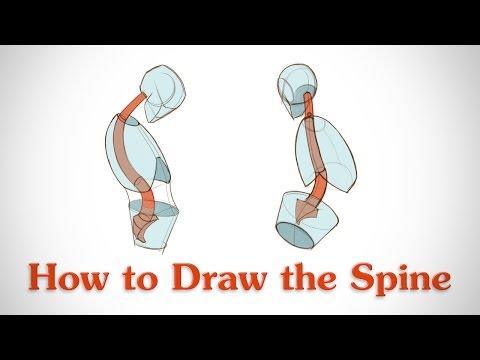 Видео как нарисовать спину человека