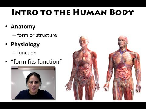 unit 5 anatomy and physiology for