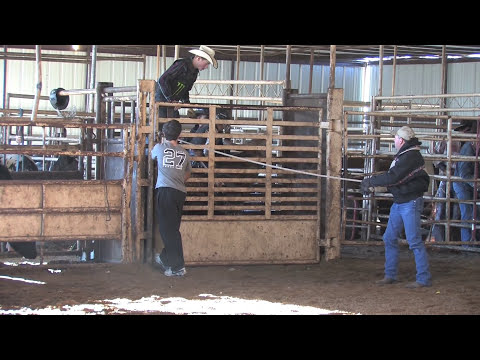 Deuce Brown Bull Riding School Video