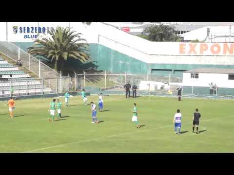 SerzedoTV - Seniores CF Serzedo 4 vs 0 Ermesinde SC (Final da Ta�a AF Porto - Brali) 01-05-2014