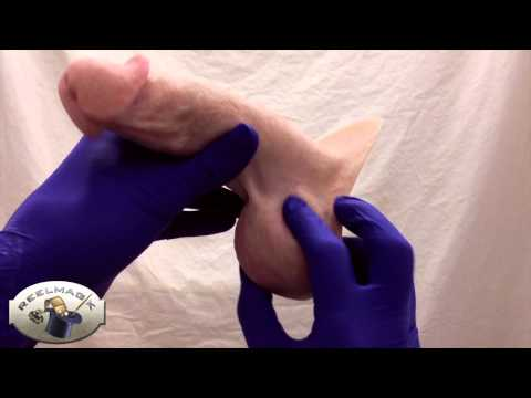 REELMAGIK Silicone Medical Prosthetic: FTM Pa