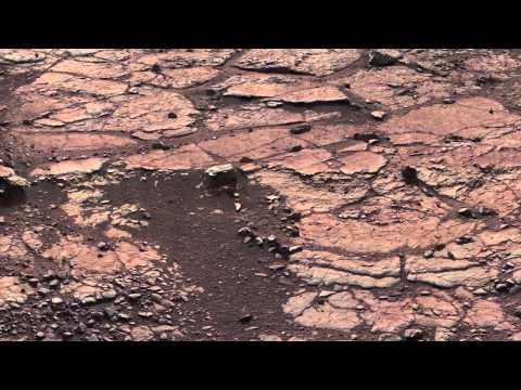 Radiation Assessment Detector samples the Mars surface environment