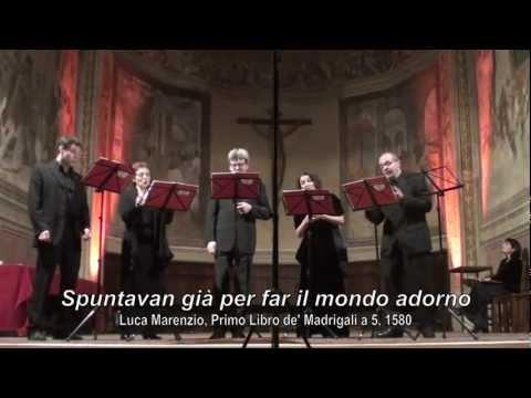 Luca Marenzio - Spuntavan già