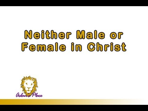 Neither Male or Female in Christ - Brian P. Cox